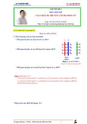 Luyện thi Đại học môn Sinh học - Chuyên đề 1: Vật chất di truyền cấp độ phân tử - Tô Nguyên Cương
