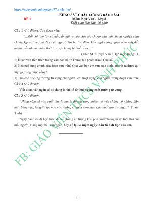 Đề khảo sát chất lượng đầu năm môn Ngữ văn Lớp 8 - Giáo viên THCS Vĩnh Phúc (Có đáp án)