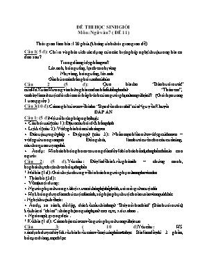 Đề thi học sinh giỏi môn Ngữ văn Lớp 7 - Đề 11 (Có đáp án)