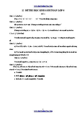 12 Đề thi học sinh giỏi Toán Lớp 6 (Có đáp án)