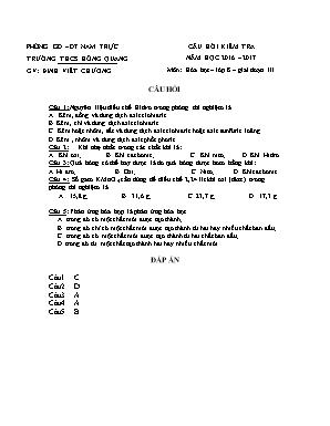 Câu hỏi kiểm tra môn Hóa học Lớp 8 - Giai đoạn III - Năm học 2016-2017 - Đinh Viết Chương (Có đáp án)