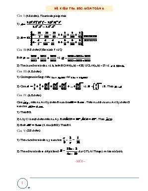 Đề kiểm tra học sinh giỏi môn Toán Khối 6 (Có đáp án)
