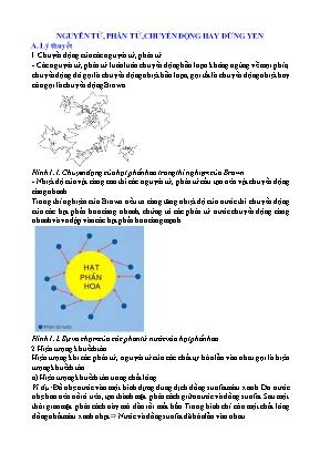 Chuyên đề Hóa học Lớp 8: Nguyên tử, phân tử, chuyển động hay đứng yên